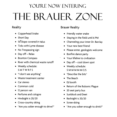 The Brauer Zone