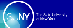Four Scholars Honored by SUNY Chancellor