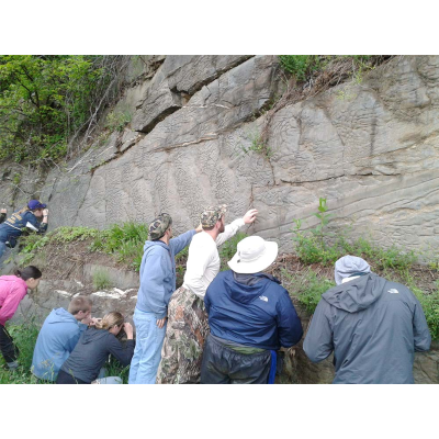 More Stratigraphy week