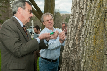SUNY Cortland Speaks for the Trees in Arbor Day Celebrations