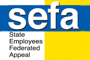SEFA Campaign Results Shared