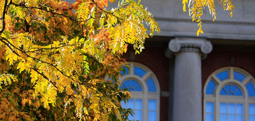 Old Main windows with fall leaves