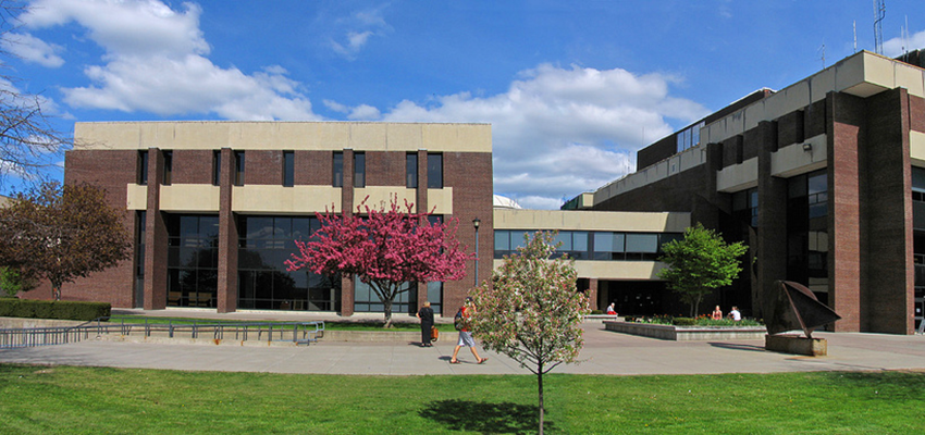 the library building