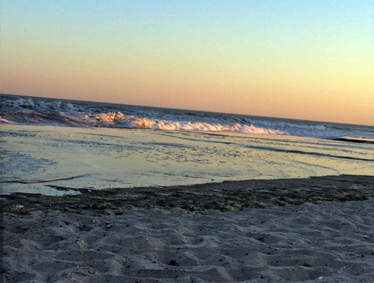 Summer Programs - Rolling waves on a beach at dusk