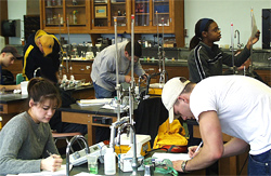 Students involved in the pH and Buffers Lab