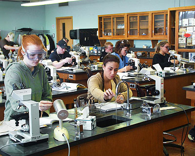 Students working in microbiology lab