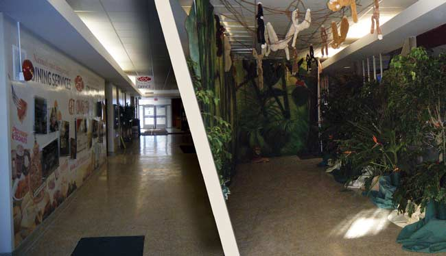 Neubig Hallway Before and After