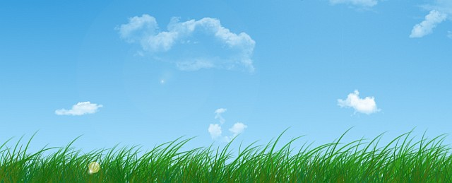 Grass & Blue Summer Sky