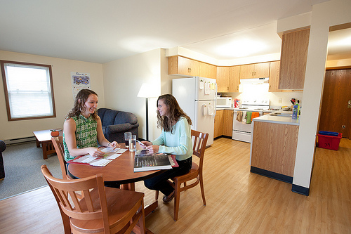 Two graduate students sit together in their dining space