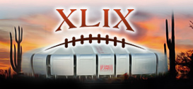 Super Bowl XLIX Raffle Tickets