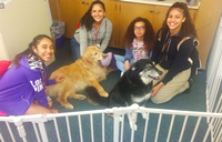 Four students sit with two dogs. All students smile at the camera.